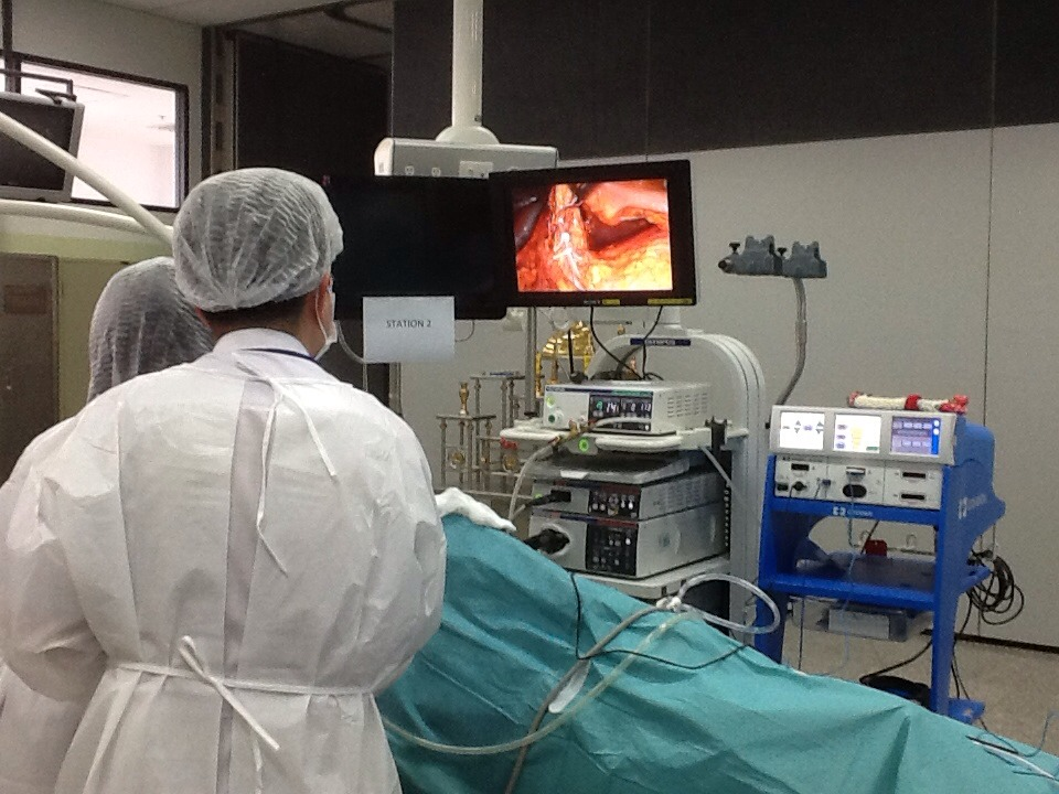 1st In Training In Laparoscopic Urology Surgery Chulalong